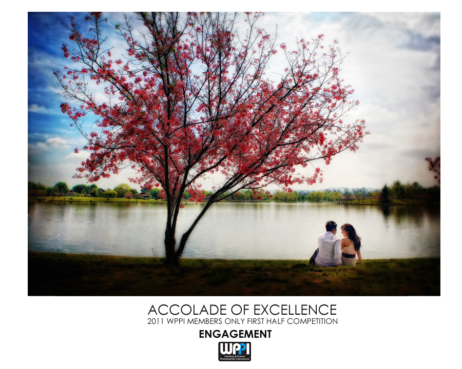 2011 First Half Members only Competition WPPI Accolade of Excellence