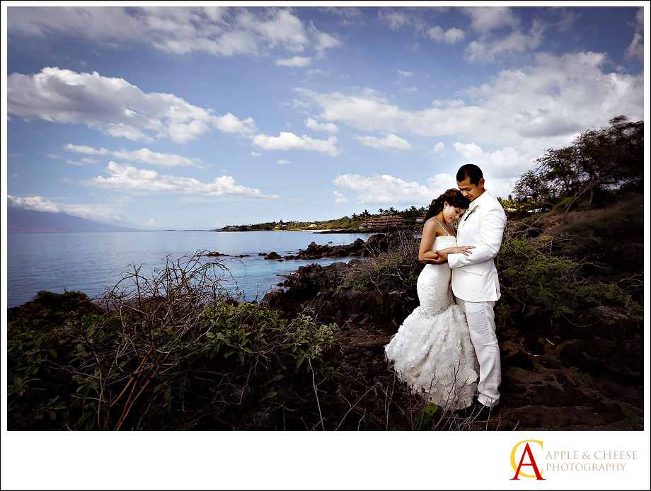Hawaii Maui Destination Wedding Photographer